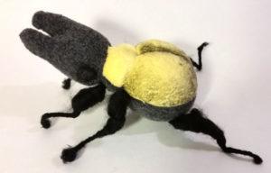 offalteeth-stag-beetle